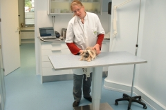 Dierenkliniek Winkelhof - Behandelkamer 1